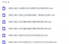 袁文魁记忆魔法师(疯狂大脑共12集)视频教程